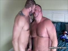 beefymuscle.com - Bigg muscle bears making love